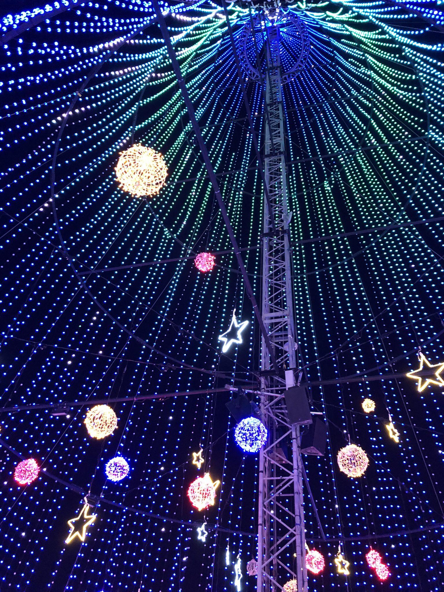 Vue sous l'arbre des lumières